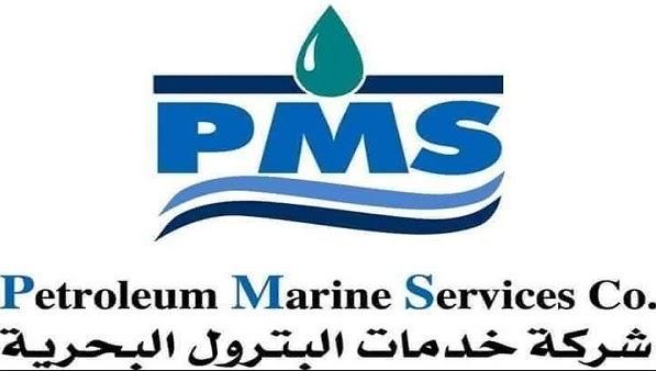المهندس السيد البدوى لـ باور نيوز : وضعنا P M S  على الطريق الصحيح ونتائج جيدة ستظهر فى اجتماع الجمعية العمومية الاحد المقبل
