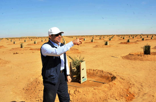 بالصور .. الرئيس السيسى يتفقد عدداً من المشروعات التنموية بمنطقة توشكى