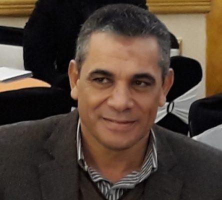محسن عليوة يكتب : قرارات الرئيس مزايا على طريق التصحيح