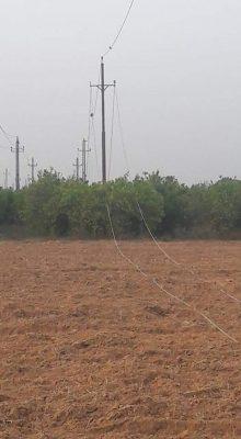 اهالي قرية نجيب محفوظ بالبحيرة يستغيثون بوزير الكهرباء : كابلات الكهرباء العارية تسببت في