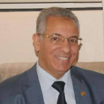 الدكتور محمد اليماني يكتب :  الكهرباء في مصر بعد ثورة 30 يونيو