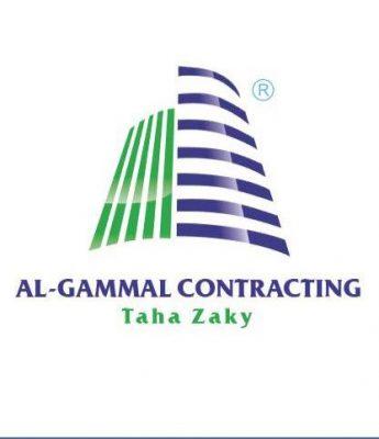نقل الكهرباء تسند عملية ربط محطة محولات منشأة ناصر بالشبكة القومية الى تحالف