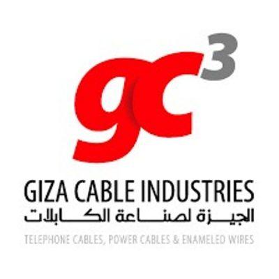 نقل الكهرباء تسند لشركة الجيزة للكابلات تعديل الخطوط المتعارضة مع القطار الكهربائي القاهرة / السويس جهد 220 ك.ف بقيمة 14.8 مليون جنيه
