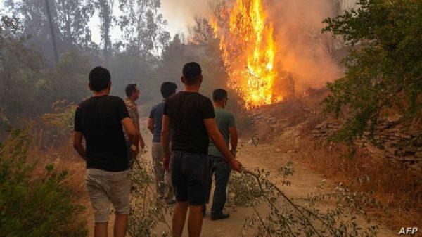 مصر تعرب عن حزنها لسقوط خسائر بشرية جراء حرائق غابات في تركيا