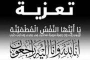 وفاة نجل المهندس عمرو الحلبي نائب رئيس شركة ايكام .. وموقع باور نيوز يتقدم بخالص العزاء